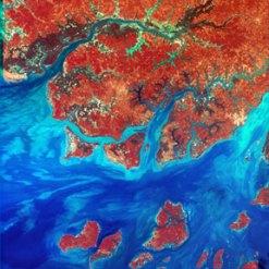 Guinea-Bassau, West Africa, Landsat Satellite Image
