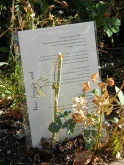 """This Fragile Web"" was planted in a garden outside an Episcopal Church in Colorado."