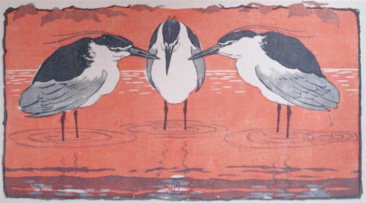 night-herons-1896.jpg!Large